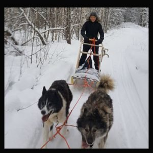 driving her own dogsled in the forest with Lulea Adventure